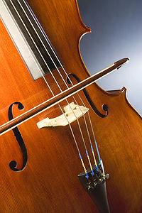 200px-Cello_study