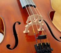 Cello_bridge_3