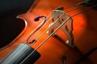 cello-2820989_640