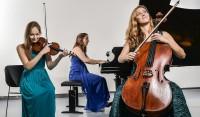 Callisto Trio donald-van-hasselt